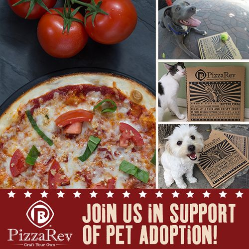 PizzaRev to Host June 28 Fundraiser to Benefit Shelter Me