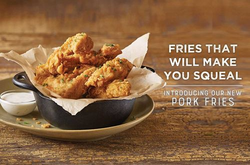 Logan's Roadhouse Just Upped the Appetizer Game with the Introduction of Pork Fries