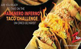 Z'Tejas Unleashes the Heat on Cinco de Mayo with Habanero Inferno Taco Challenge