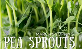 March Brings Pea Sprouts to Salata's Toppings Lineup