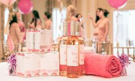 Picnic In Style At 1st Annual Rosé All Day Wine & Music Festival