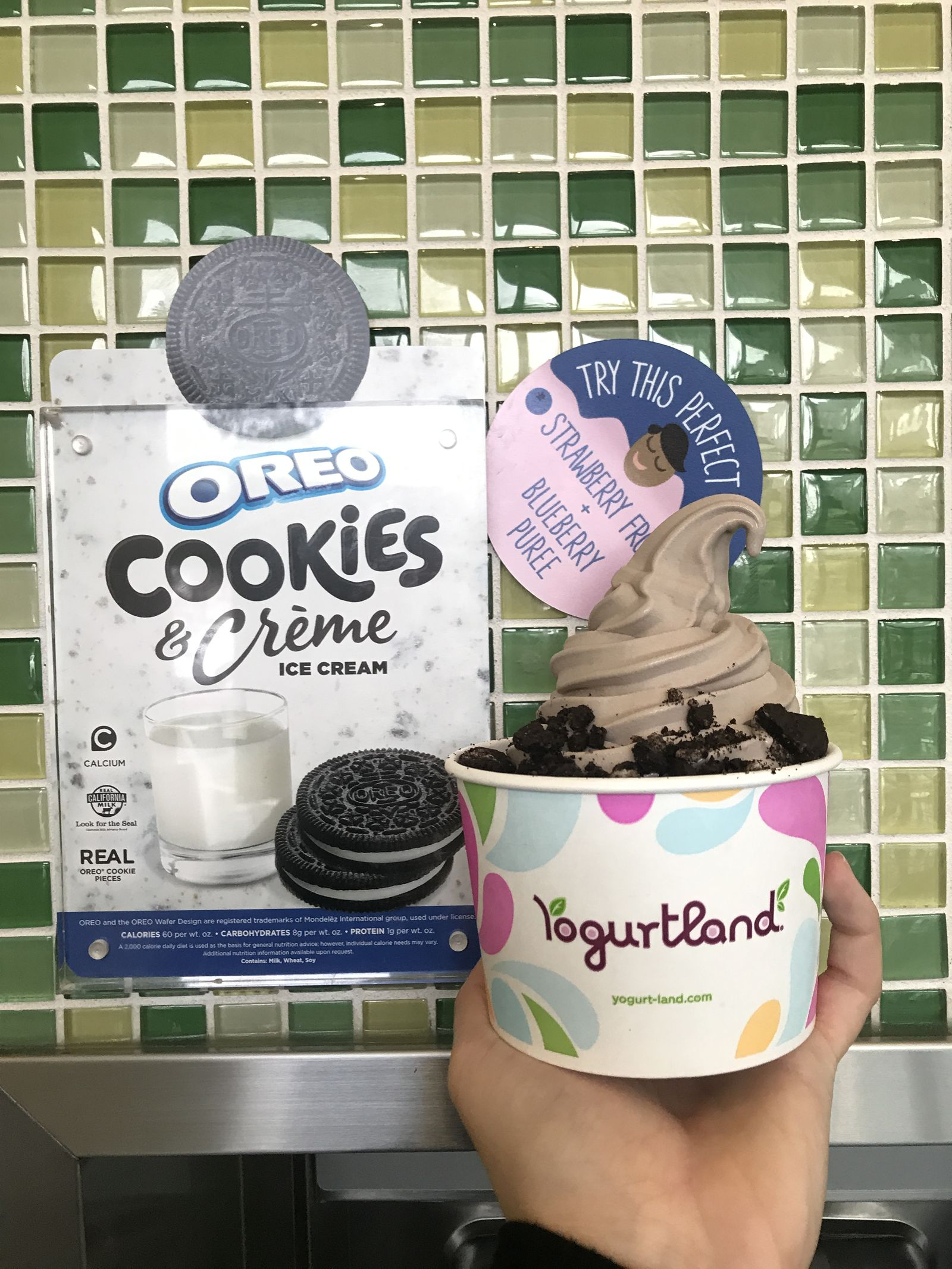 Yogurtland Adds Two New Scratch-made Flavors to Delicious Dessert Lineup
