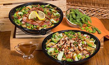 The Habit Burger Grill Introduces New Sesame Ginger Salad