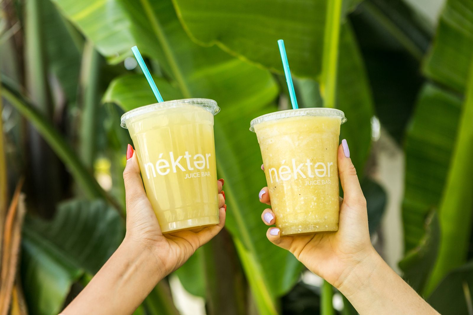 Nékter Juice Bar Powers Up Menu With Craveworthy New Flavors, Nourishing Boosts, Limited Time Specials, and First Vegan Frozen Ice Cream