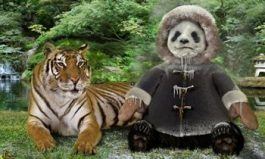 Pei Wei's Tiger Freezer-Burns Panda Express in Witty New Campaign