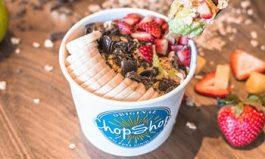 Make the Nice List with Original ChopShop's New Avocado Nice Cream Superfruit Bowl
