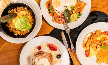 Brunch Is Back at GuacAmigos in Newport Beach Harbor!