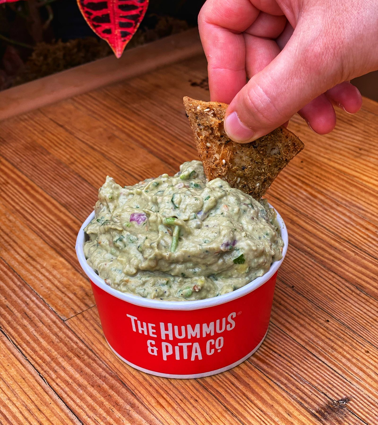Fresh Mediterranean concept, The Hummus & Pita Co. further expands  its vegan offerings with four creative new dishes focused in health and wellness including Black Bean Hummus, AvoGanoush, Corfu Cauliflower Rice, and Vegan Gyro.