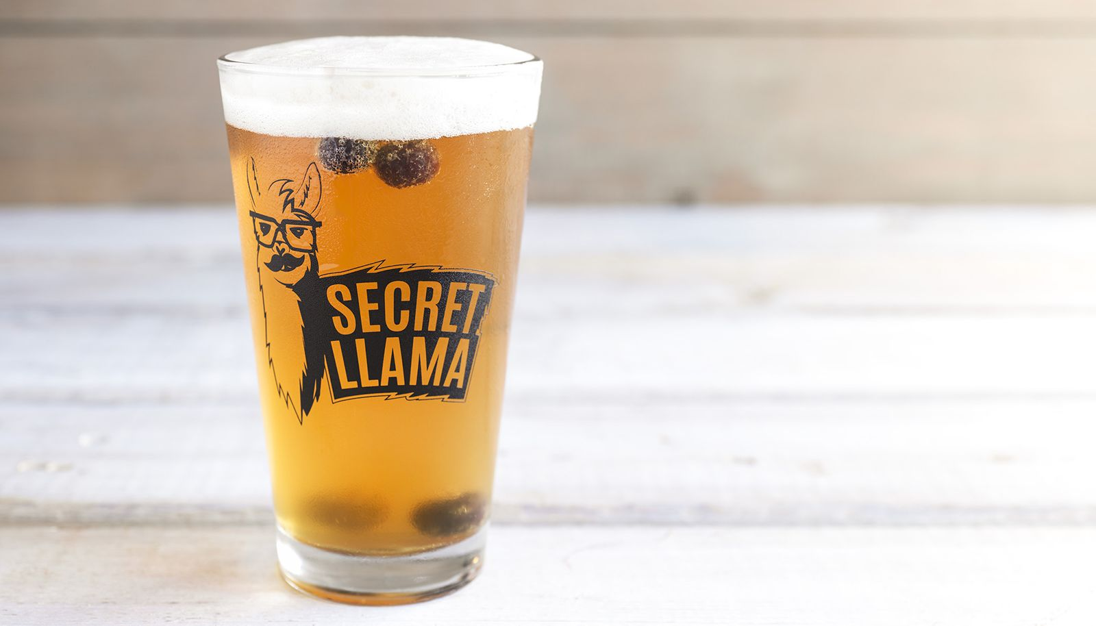 "World of Beer Bar & Kitchen Hosts ""Bring Your Llama to Wob Day"" in Honor of National Llama Day"