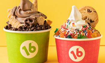 Celebrate National Ice Cream Day With 16 Handles!