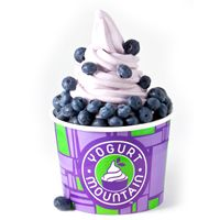 Yogurt Mountain Continues Expansion in West Tennessee and Opens 42nd Store