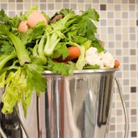 For Restaurants, Composting Is a Welcome but Complex Task