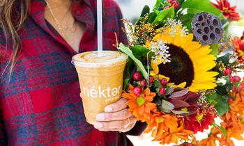 Nékter Juice Bar Gives 'Em Pumpkin to Talk About
